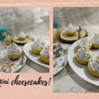 Mini cheesecakes!
